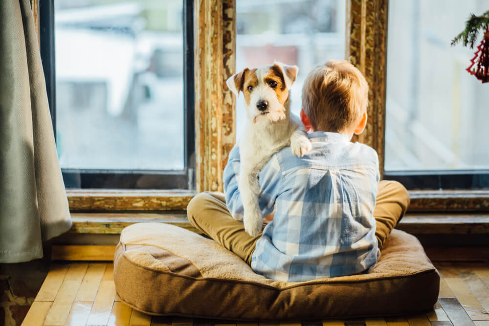 boy looking out of window with dog
