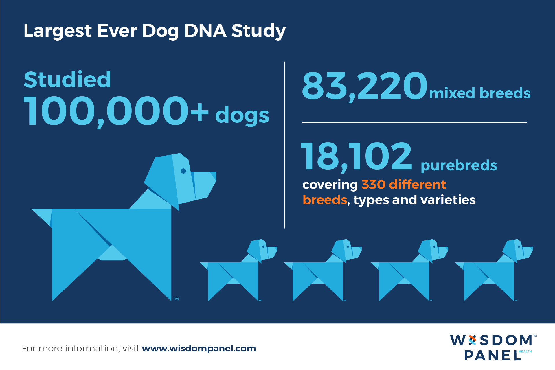 Largest ever dog DNA study infographic